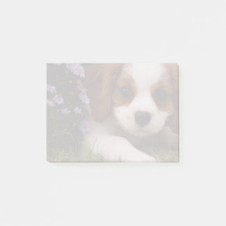 Cavalier King Charles Spaniel Puppy behind flowers Post-it Notes