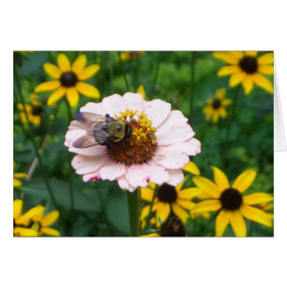 CD- Busy Bee Notecard