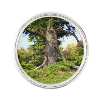 Cedar-of-Lebanon Tree Lapel Pin