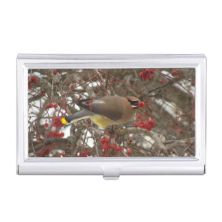 Cedar Waxwing Business Card Holder