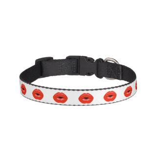 Celebration Kiss - Dog Collar