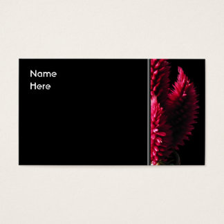 Celosia Caracas. Cockscombs. Pink Flowers. Business Card