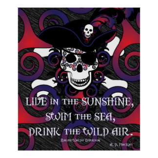 Celtic Spiral Pirate in Blues and Reds Posters