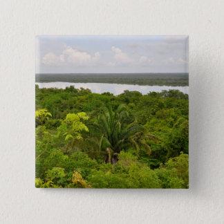 Central America Rain Forest in Belize 15 Cm Square Badge