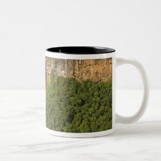Chamarel Waterfall-highest on Mauritius, over Two-Tone Coffee Mug
