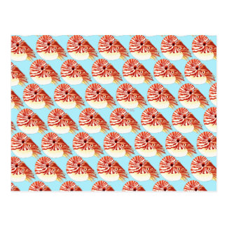 Chambered nautilus Pattern in blue Postcard