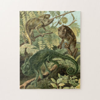 Chameleon Puzzle Vintage Illustration