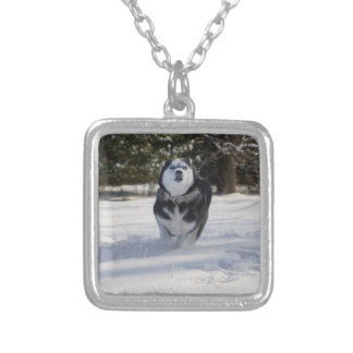 Charging Throught Silver Plated Necklace