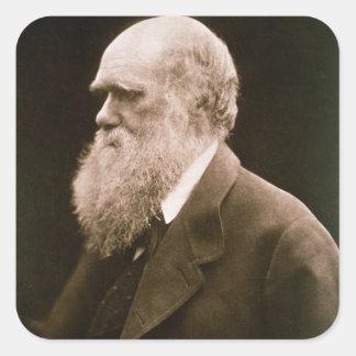 Charles Darwin (1809-82) (photo) Square Sticker