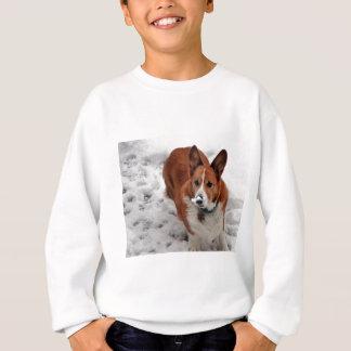 Charlie Snow Snout Sweatshirt