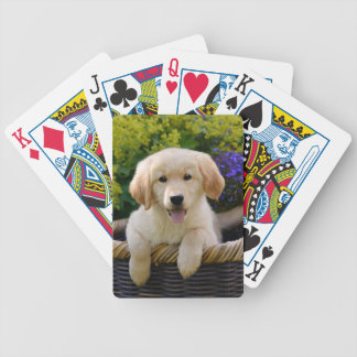 Charming Goldie Cute Puppy, Game Bicycle Playing Cards