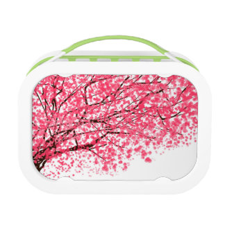 Cheery Cherry Blossoms Lunchbox