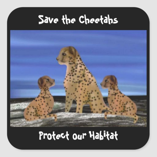 Cheetah Habitat Stickers