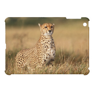 Cheetah on small mound for better visibility iPad mini cases