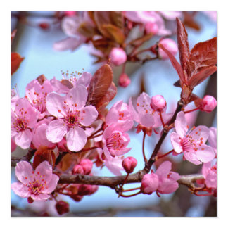 Cherry Blossom Pink Style Magnetic Invitations