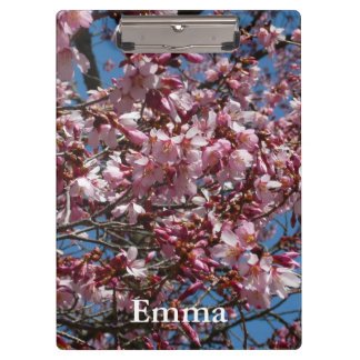 Cherry Blossoms and Blue Sky Spring Floral Clipboards