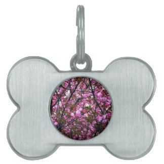 Cherry Blossoms Pet ID Tag