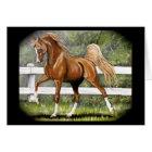 Chestnut Arabian Horse Running Card