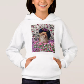 Chi Chi in Flowers, Chihuahua Puppy Dog, Cute Hat