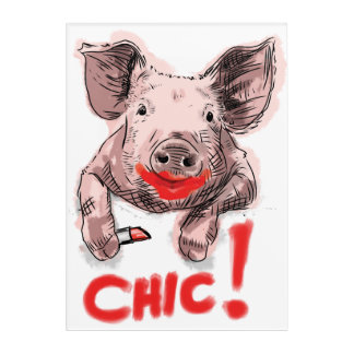 Chic Pig - Poster Acrylic Print