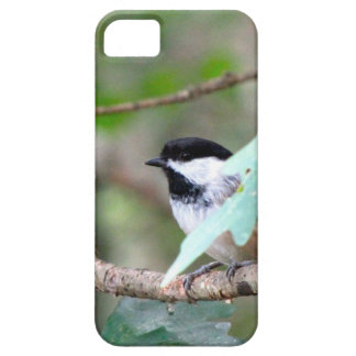 Chickadee By Ginny IPhone Case By Ginny