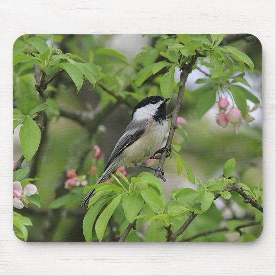 Chickadee Mouse Pad