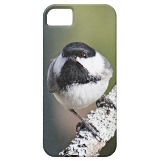 Chickadee photo iPhone 5 covers