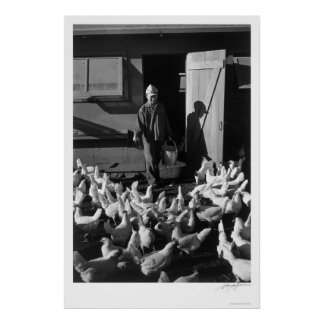 Chicken Farm Mori Nakashima 1943 Poster