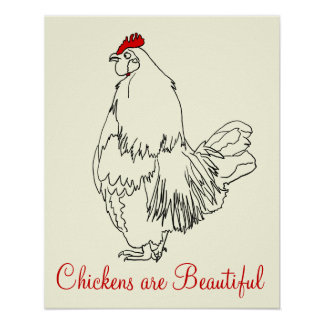 Chickens are Beautiful Funny Cockerel Art Drawing Poster