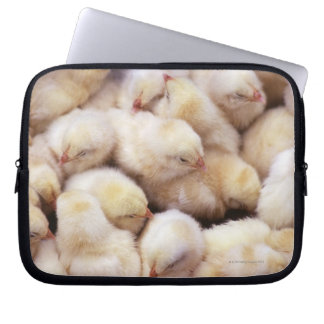 chicks, brood of chickens laptop sleeve