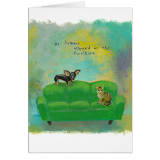 Chihuahua dog and cat on sofa fun original art card