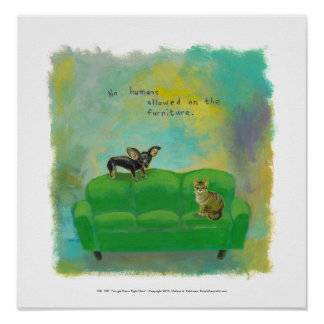 Chihuahua dog and cat on sofa fun original art poster