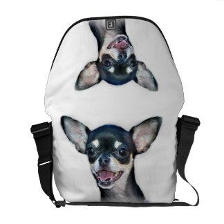 Chihuahua dog courier bag