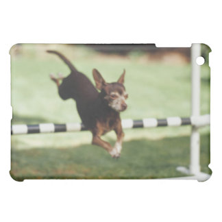 Chihuahua Jumping Hurdle iPad Mini Cover