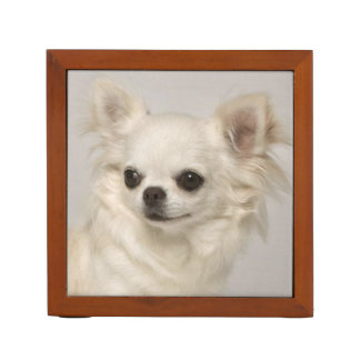 Chihuahua.png Desk Organiser