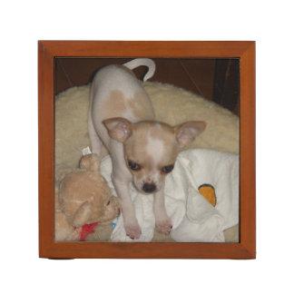 Chihuahua_puppy Desk Organiser