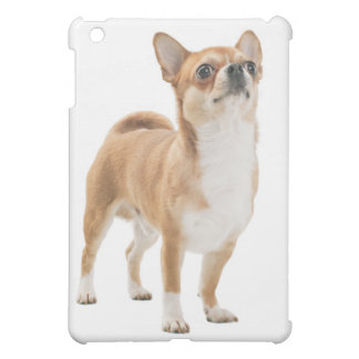 Chihuahua Puppy Dog iPad Shell Case iPad Mini Cases