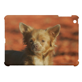 Chihuahua Puppy Headshot Case For The iPad Mini