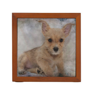 Chihuahua/Yorkie Puppy Desk Organiser