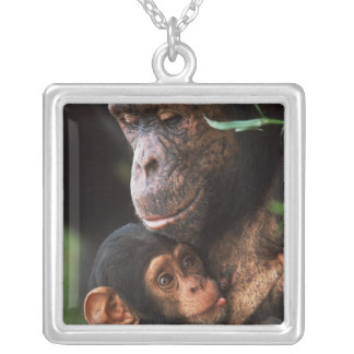 Chimpanzee Mother Nurturing Baby Silver Plated Necklace