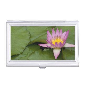 China, Hong Kong, New Territories. Chi Lin Business Card Holder