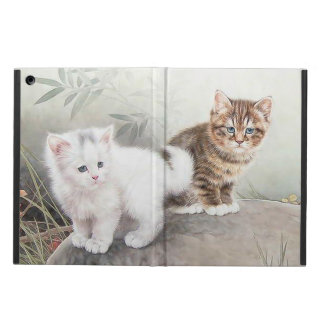 Chinese Cat Art Two Kittens iPad Air Case