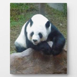Chinese Panda Bear Plaque