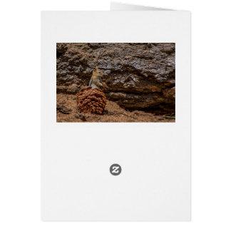 Chipmunk Harvest Card