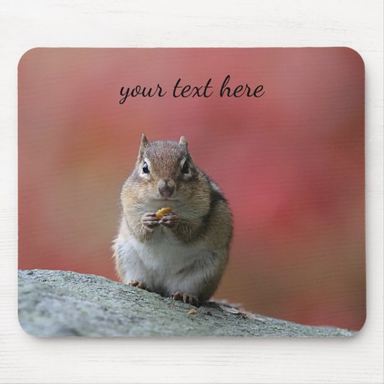 Chipmunk in autumn mouse pad
