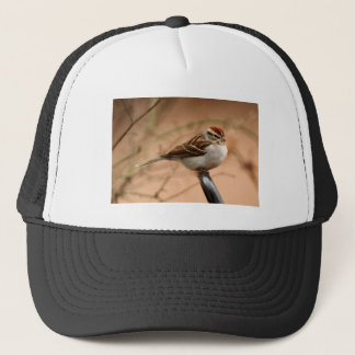 Chipping Sparrow Trucker Hat