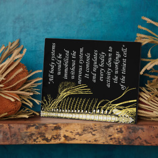 Chiropractic Nervous System Quote Easel Plaque