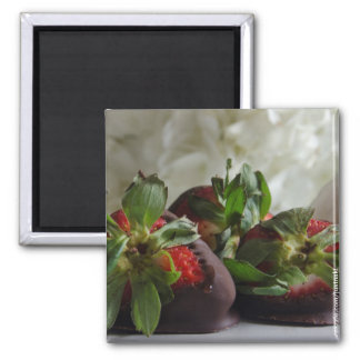 Chocolate dipped Strawberries magnet