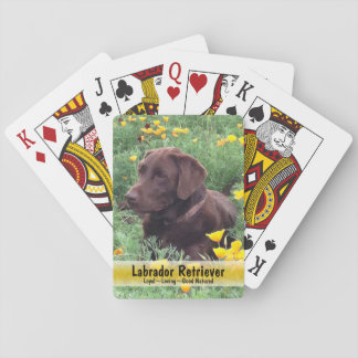 Chocolate Lab in California Poppy Patch Playing Cards
