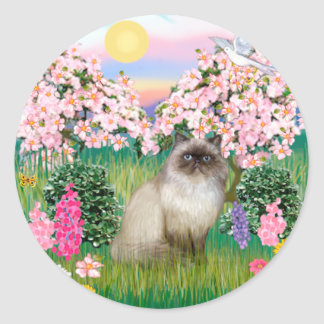 Chocolate Point Himalayan -  Blossoms Classic Round Sticker